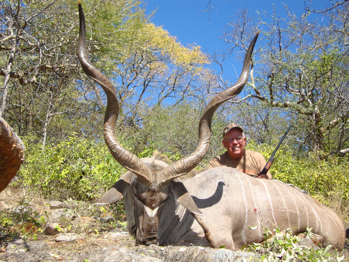 Greater-Kudu-Namibia.JPG